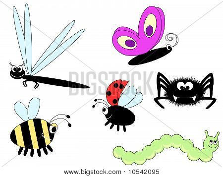 Cute Insects
