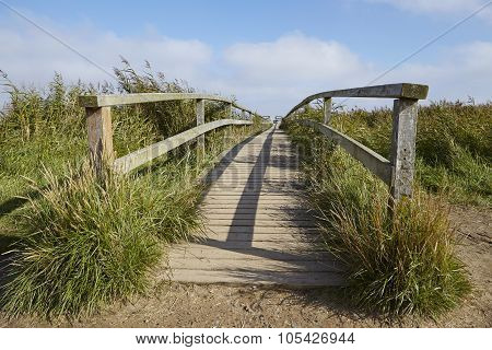 Amrum (germany) - Wooden Bridge In The Landscape