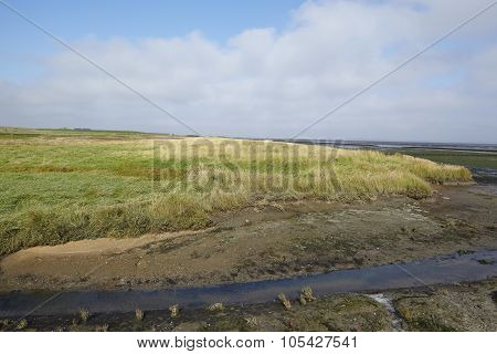 Amrum (germany) - North Frisian Landscape