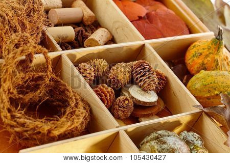 Autumn decoration ingredients for creative artwork in wooden compartment.