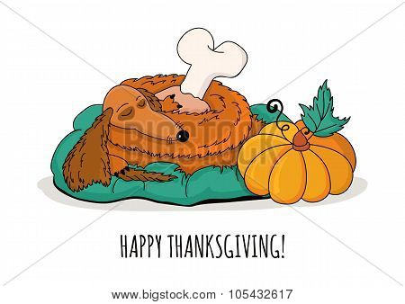 Sleeping Dachshund Dog With Turkey Leg And Pumpkin, Isolated On White Background. Vector Illustratio