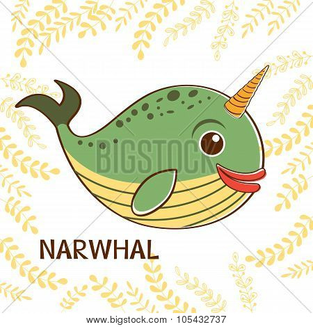 Narwhal the unicorn of the sea