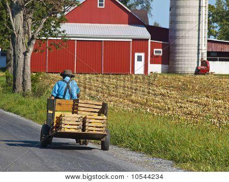 Fazendeiro Amish