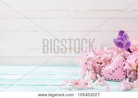 Flowers Hyacinths, Crocus  And Decorative Heart