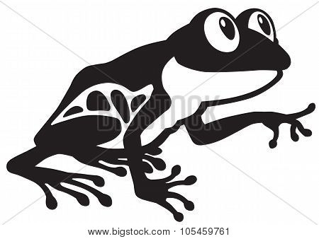 frog black and white