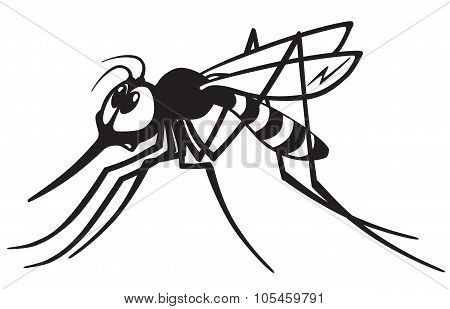 mosquito black and white