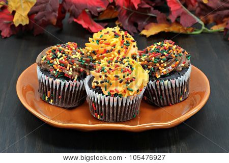 Chocolate Cupcakes Decorated With Sprinkles For Autumn.