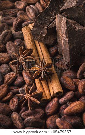 Raw Cocoa Beans, Black Chocolate, Cinnamon Sticks, Star Anise