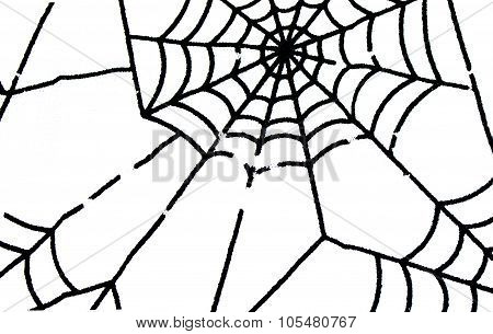 Spiderweb Isolated On White Background