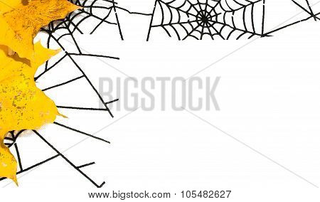 Halloween Background With Autumn Leaves And Spider Web With Copy Space