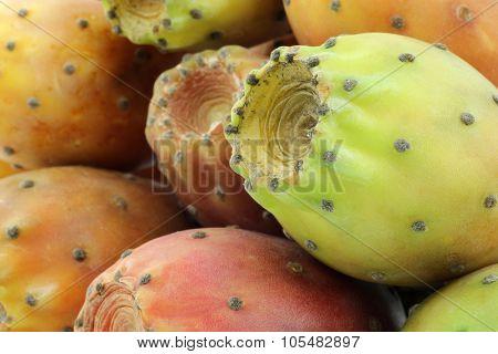 fresh colorful cactus fruit background