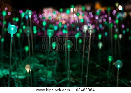 Houston, Tx/usa - 12 03 2014: Green And Purple Led Lights At Art Installation Field Of Light At Disc