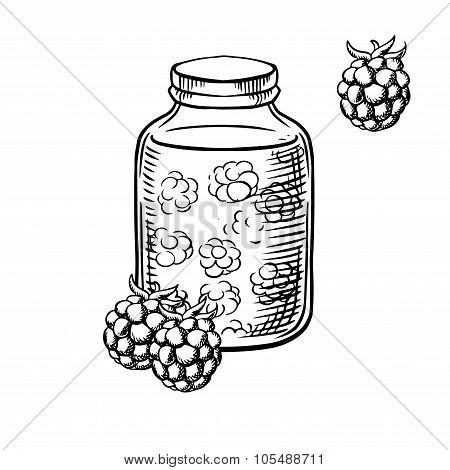 Sketch of raspberry jam in jar and berries