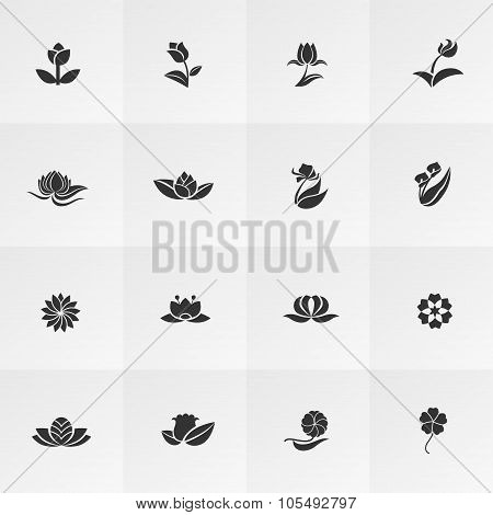 Silhouette Fantasy Logo Shape Flower Such As Lotus Rose Tulip Sunflower Daisy Clover Leaf And Other