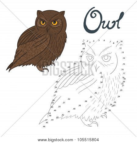 Educational game connect dots to draw owl bird
