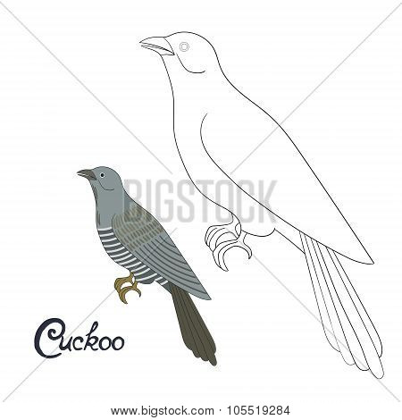Educational game coloring book cuckoo bird vector