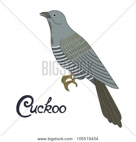 Bird cuckoo vector illustration