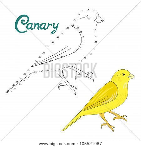 Educational game connect dots to draw canary bird
