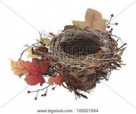 Bird's Nest in autumn.