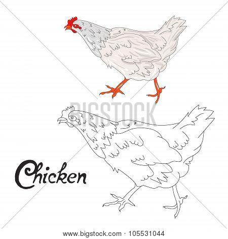 Educational game coloring book hen bird vector