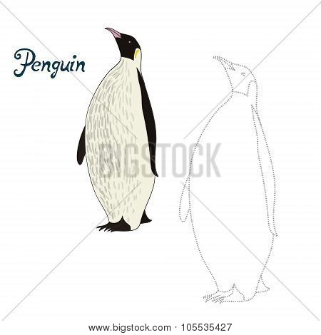 Educational game connect dots to draw penguin bird