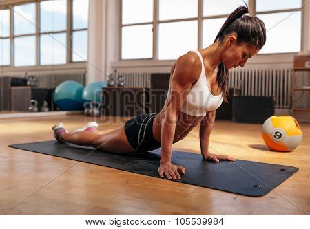 Fit Woman Working Out At Health Club