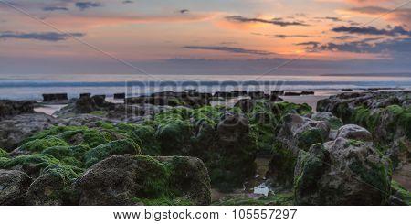 Panorama Of The Sunset On The Beach. Algae On The Rocks.