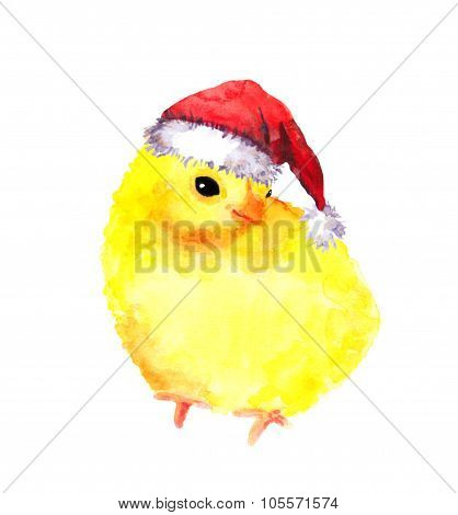New year baby chicken in red santa's hat. Watercolour bird