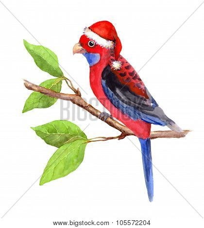 Joy character new year parrot in red santa's hat. Water colour