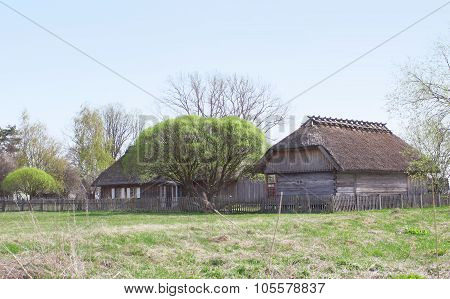 Old Historical Wooden House Standing At The Forest