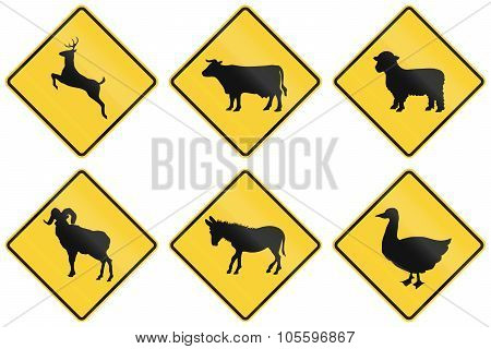 Collection Of Animal Crossing Signs Used In The Usa