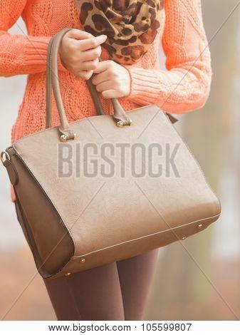 Handbag In Woman Hands. Fall Autumn Fashion.