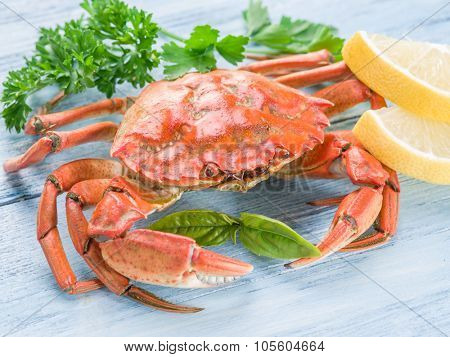 Seafood - cooked crab with lemon and herbs.