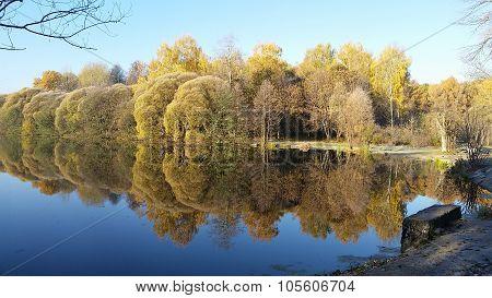 Marvelous reflection