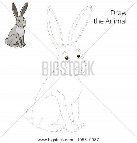 Draw the forest animal hare cartoon vector