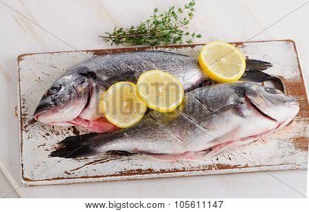 Fresh Raw Dorado Fish On A Wooden Cutting Board.