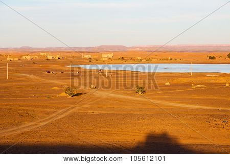 Sunshine In The Lake Yellow  Morocco Sand And