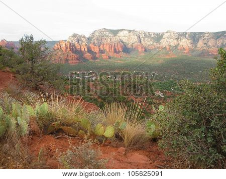 Red Rocks Sedona landscape