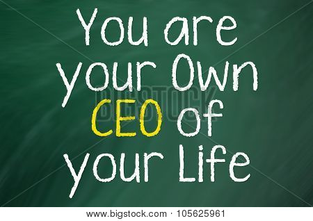 You are your own CEO
