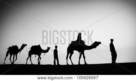 Indigenous Indian Men Walking Through Desert Camel Concept