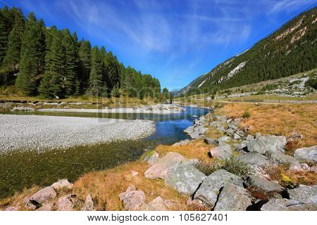 The narrow stream flows between fields and pine forests. Autumn creek shallow. Austrian Alps