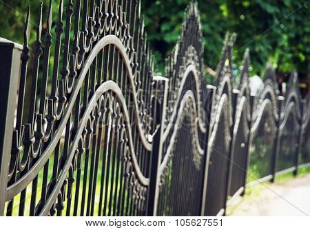 Forged Fence In The City Park