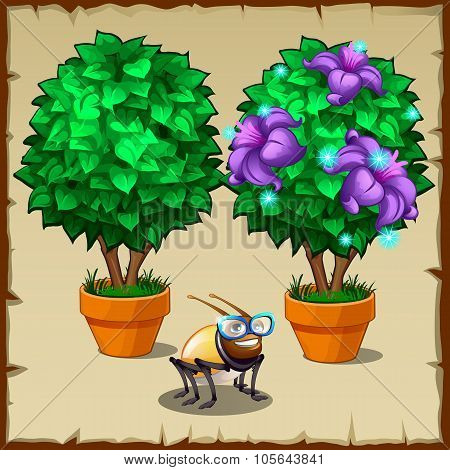 Set of two miniature potted trees and fun insect
