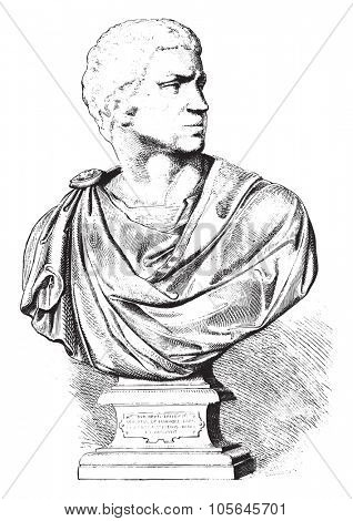 National Museum Florence, Brutus, unfinished bust, by Michelangelo, vintage engraved illustration. Magasin Pittoresque 1877.