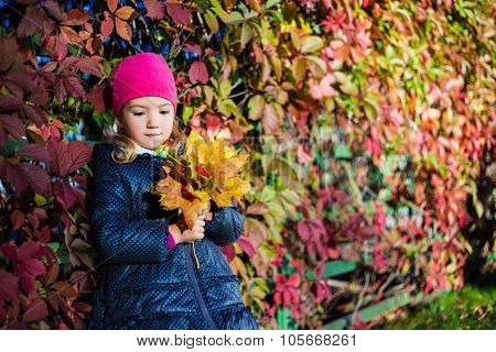 Autumn Concept - Daydreaming Little Girl With Yellow Leaves In Park