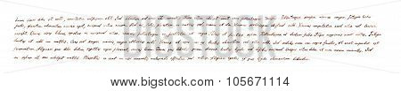 Hand written horizontal banner text - latin note Lorem ipsum
