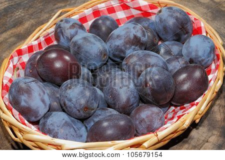 Freshly Harvested Plums