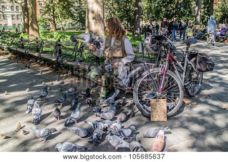 Man With Birds At Washington Square Garden