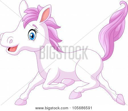 Cute beautiful pony horse running isolated on white background