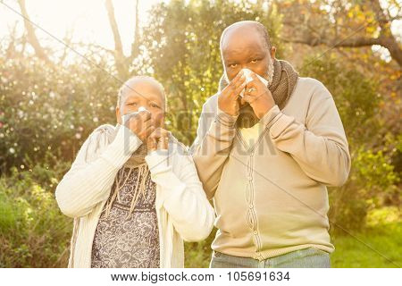 Senior couple blowing their nose in parkland